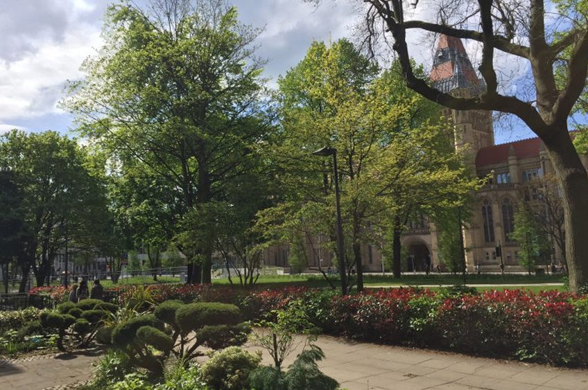 New interactive tree trail for University of Manchester
