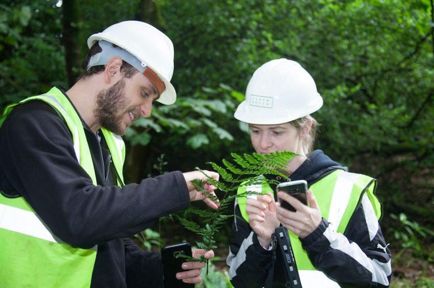 What is Landscape Management?